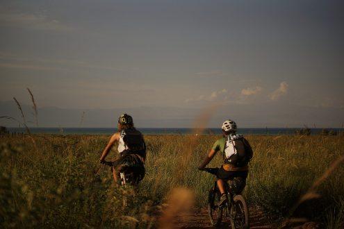 pexels photo 200516 e1492512269735 660x330  Thomas Kastrup, Destination Fyn Klyngen, Bike Island 2020 Fyn vil være eventyr-ø for cykelturister tema-cykelturisme, natur Fyn vil være eventyr-ø for cykelturister