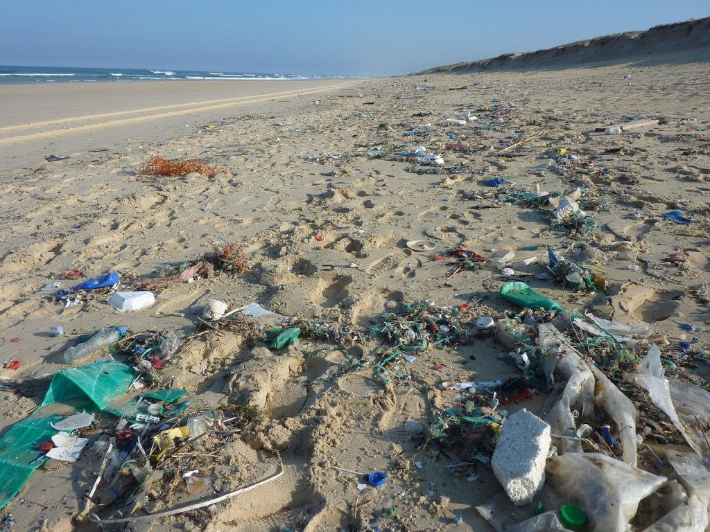 Plastik paa strand 1024x768  Esben Lunde Larsen Er din strand blevet en svinesti? kystturisme Er din strand blevet en svinesti?