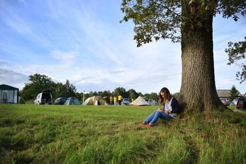 camping telte 660x330   Turismens regionale og lokale organisationer aktoer Turismens regionale og lokale organisationer