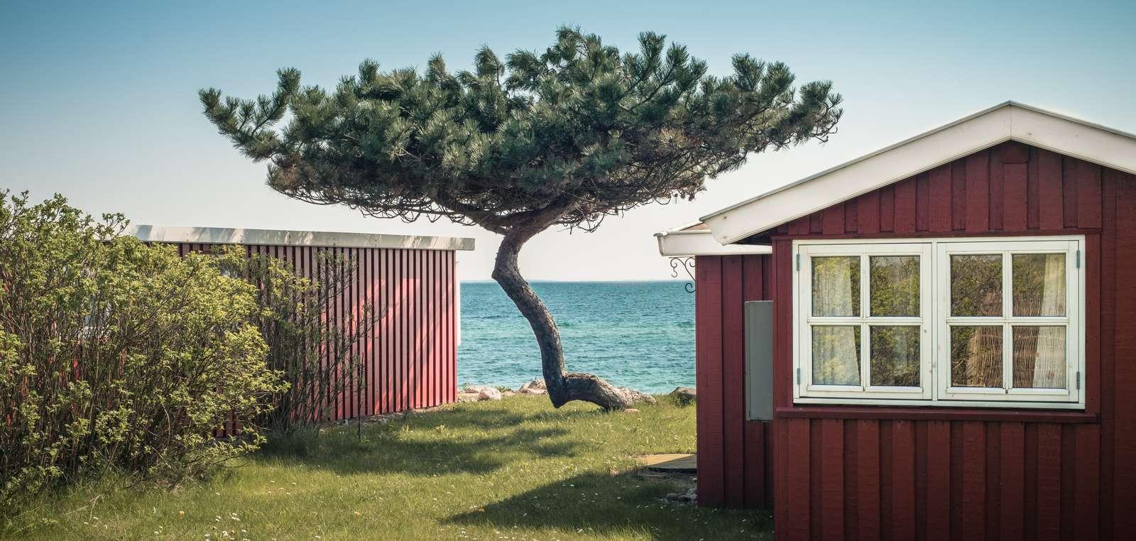 Der bliver ekstra tryk på de danske sommerhuse i højsæsonen. (Foto: VisitSydsjælland-Møn)
