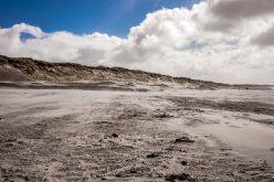 victor beckmann 57651 unsplash 310x165 - Sisse Wildt, Dansk Kyst- og Naturturisme - Flere danskere bliver hjemme i ferien
