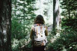 tree nature forest outdoor walking person 1067051 pxhere.com  310x165  Visit Horsens, Camønoen Ildsjæle vil skabe Camino rundt om Horsens Fjord natur, featured Ildsjæle vil skabe Camino rundt om Horsens Fjord